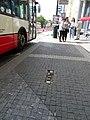 Karlovo náměstí, narušená dlažba v autobusové zastávce.jpg