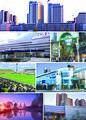 Kashiwa montage.jpg