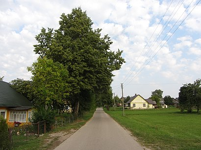 How to get to Kibyšiai with public transit - About the place
