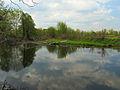 Kilnyshche lake Muromets2.JPG