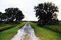 Kissimmee Prairie Preserve State Park Florida - Military Trail.jpg