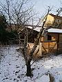 Kleingartenanlage Famos (Berlin-Pankow) 2013 (Alter Fritz) 37.JPG