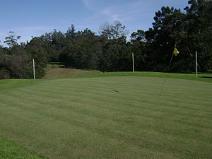 Kodaikanal - Kodaikanal Golf Club