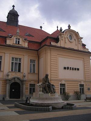 Museum of Danube Komarno - Image: Komárno 05