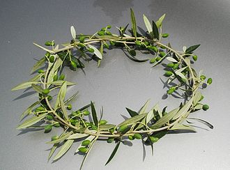Olive wreath - Kotinos, the prize for the winner at the Ancient Olympic Games.