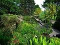 Kraemmerhuset - piękny ogród - panoramio (6).jpg