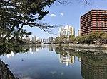 Kyobashigawa River from Shukkei Garden 2.jpg