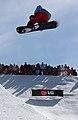 LG Snowboard FIS World Cup (5435923070).jpg