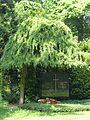LSG Melatenfriedhof 3.jpg