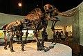 La Brea Mastodons.jpg