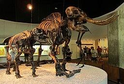 La Brea Mastodons