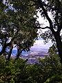La nature de Annaba.jpg