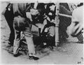 Labor-Strike-Ford Motor Company-men in physical altercation - NARA - 195599.tif