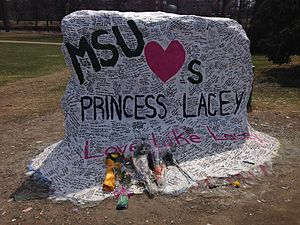 The Rock (Michigan State University) - The Rock the night following the vigil.