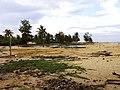 Laem Pho, Yaring District, Pattani, Thailand - panoramio.jpg