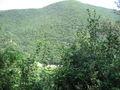 Lago di Corbara gola del Forello.jpg
