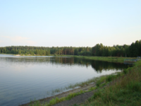 Lake in Mordovsky Zapovednik.png