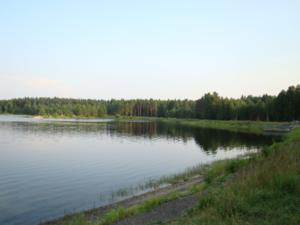 Mordovski Nature Reserve - Mordovski Zapovednik