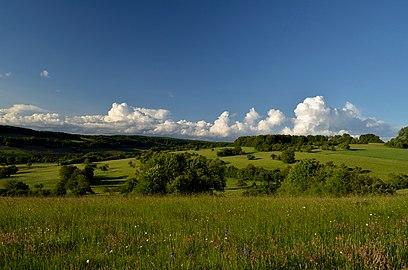 Landschaft Bliesgau Streuobstwiesen.jpg
