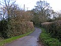 Lane to Woodbury castle - geograph.org.uk - 1601254.jpg