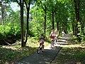 Langenboom, cyclotourisme en forêt de langenboom.JPG
