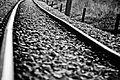 Las piedras del camino marcado (5151266057).jpg