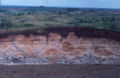 Laterite formation on basaltic tuff, Madagascar. C 005.jpg