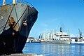 Le navire cargo ''Rimon''.jpg