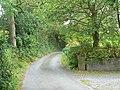 Leafy lane - geograph.org.uk - 553348.jpg