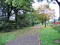 Leaves on the line - geograph.org.uk - 960239.jpg