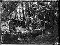 Legiony Polskie na Wołyniu 03, 1916.jpg