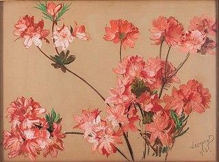 Różowe azalie