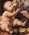Leonardo da Vinci - The Madonna of the Carnation (detail) - WGA12688.jpg