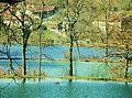 Les étangs du Thivoley au printemps.jpg