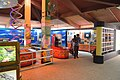 Life Science Gallery - Digha Science Centre - New Digha - East Midnapore 2015-05-02 9488.JPG