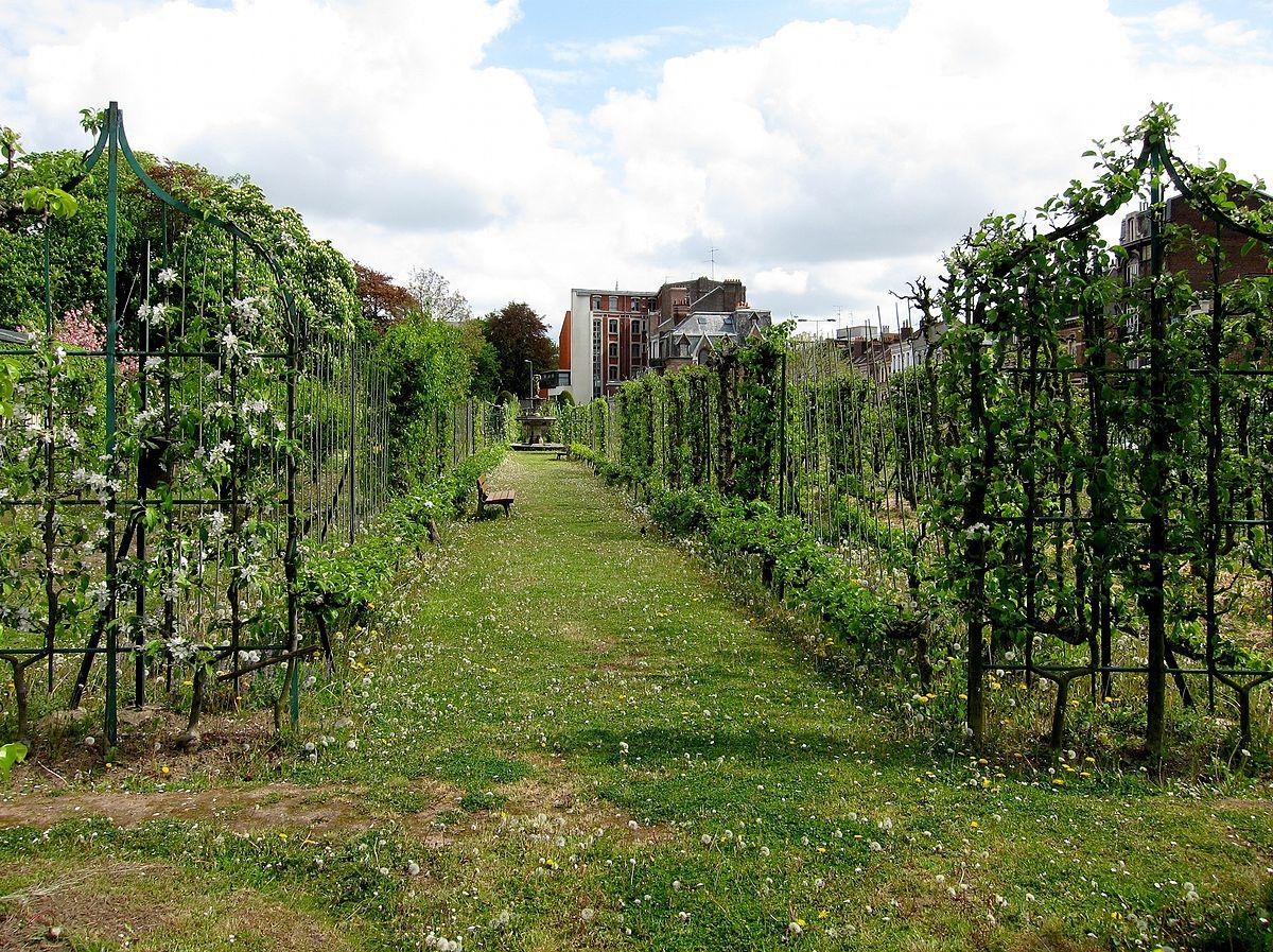 Arboriculture fruiti re wikip dia for Jardin vauban lille