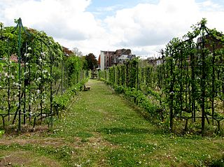 File lille vauban jardin arboriculture jpg wikimedia commons for Le jardin d alix lille