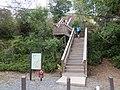Lind Point Trail, St John, USVI - panoramio.jpg