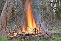 Living Flame.jpg