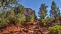 Llama Trail (28246920109).jpg