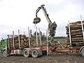 Loading logs for transportation - geograph.org.uk - 569472.jpg
