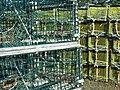 LobsterTraps2ty13978.jpg