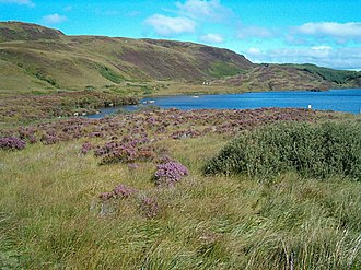 Knapdale - Loch Arail in late summer, with heather in bloom
