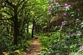 Loch Lomond and The Trossachs National Park in the end of May-1.jpg