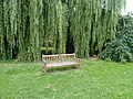 Long shot of the bench (OpenBenches 1861-1).jpg