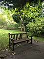 Long shot of the bench (OpenBenches 2119).jpg