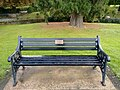 Long shot of the bench (OpenBenches 2257-1).jpg