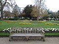 Long shot of the bench (OpenBenches 5510-1).jpg