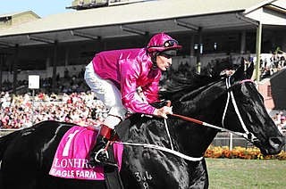 Lonhro Australian-bred Thoroughbred racehorse