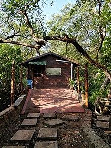 Look inside salim ali national park.jpg